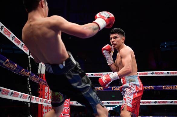fight3